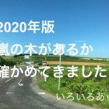 2020嵐の木サムネ